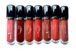 All Chambor Extreme Wear Transfer Proof Liquid Lipstick Shades, Swatches, Review