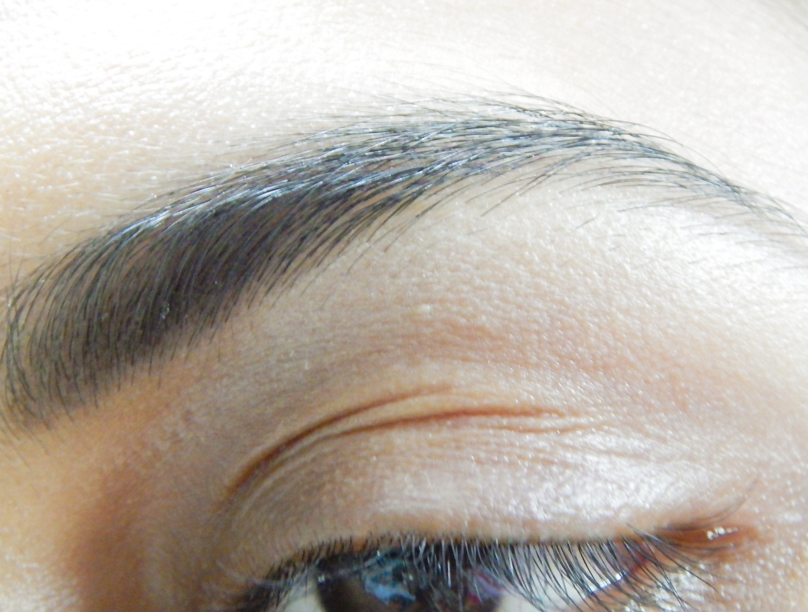 Maybelline Fashion Brow Duo Shaper Brown Review eotd on eye brows