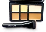 Freedom Pro Cream Strobe Palette with Brush Review, Swatches